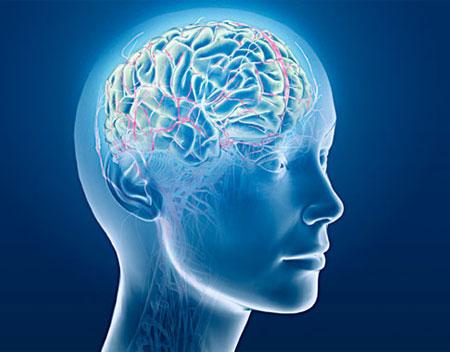 Beyninizi Çalıştırın, Bulmaca Çözün